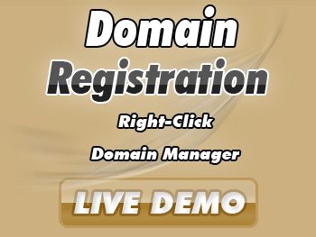Economical domain name services
